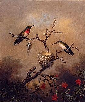 Martin Johnson Heade, Colibris gorge rubis - GRANDS PEINTRES / Heade