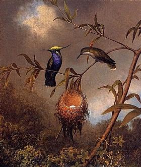 Martin Johnson Heade, Nid de colibris poitrine noire - GRANDS PEINTRES / Heade