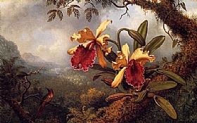 Martin Johnson Heade, Orchidées et colibris - GRANDS PEINTRES / Heade