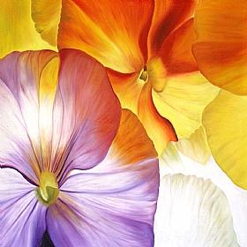Fleurs et Nature, Pensées mauves et jaunes - PEINTURES / Tableaux bien-être