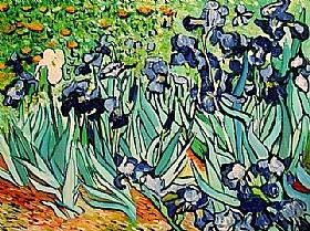Vincent Van Gogh, Les Iris - GRANDS PEINTRES / Van Gogh