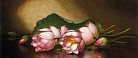 Martin Johnson Heade, Fleurs de lotus égyptiens - GRANDS PEINTRES / Heade