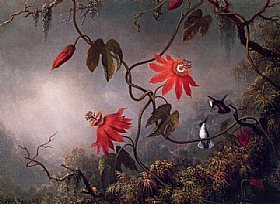 Martin Johnson Heade, Colibris et fleurs de passion - GRANDS PEINTRES / Heade