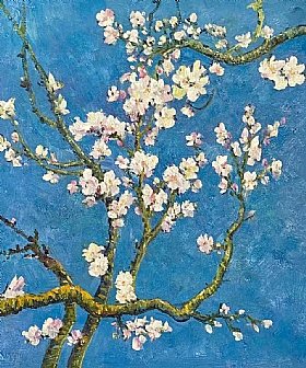 Fleurs et Nature, Fleurs de cerisiers - PEINTURES / Tableaux Faune & Flore