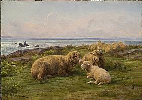 Rosa Bonheur, Moutons en bord de mer - GRANDS PEINTRES / Bonheur