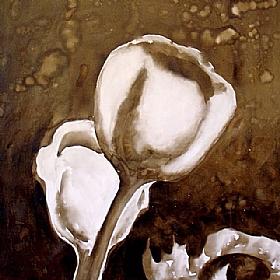 Nature et Flore, Coquelicots givrés - GRANDS FORMATS / 80cm x 80cm